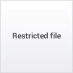 Governor Young Letterbook